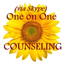 one on one skype counseling