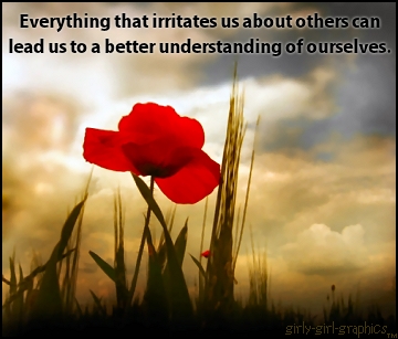 Everything-that-irritates-us-about-others-can-lead-us-to-a-better-understanding-of-ourselves