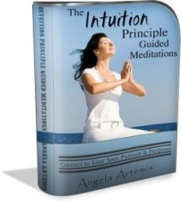 Intuition-Principle-audio-recordings-3d-modernsoftware-box-253x300