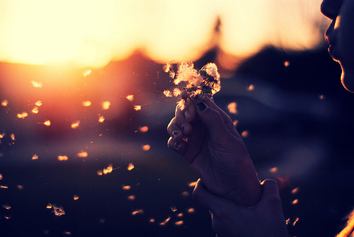 Let go of Expectations for True Inner Contentment and Happiness