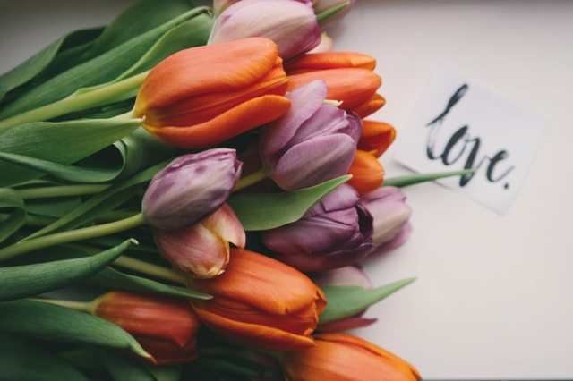 53 Love Quotes to Heal & Inspire You on Valentine's